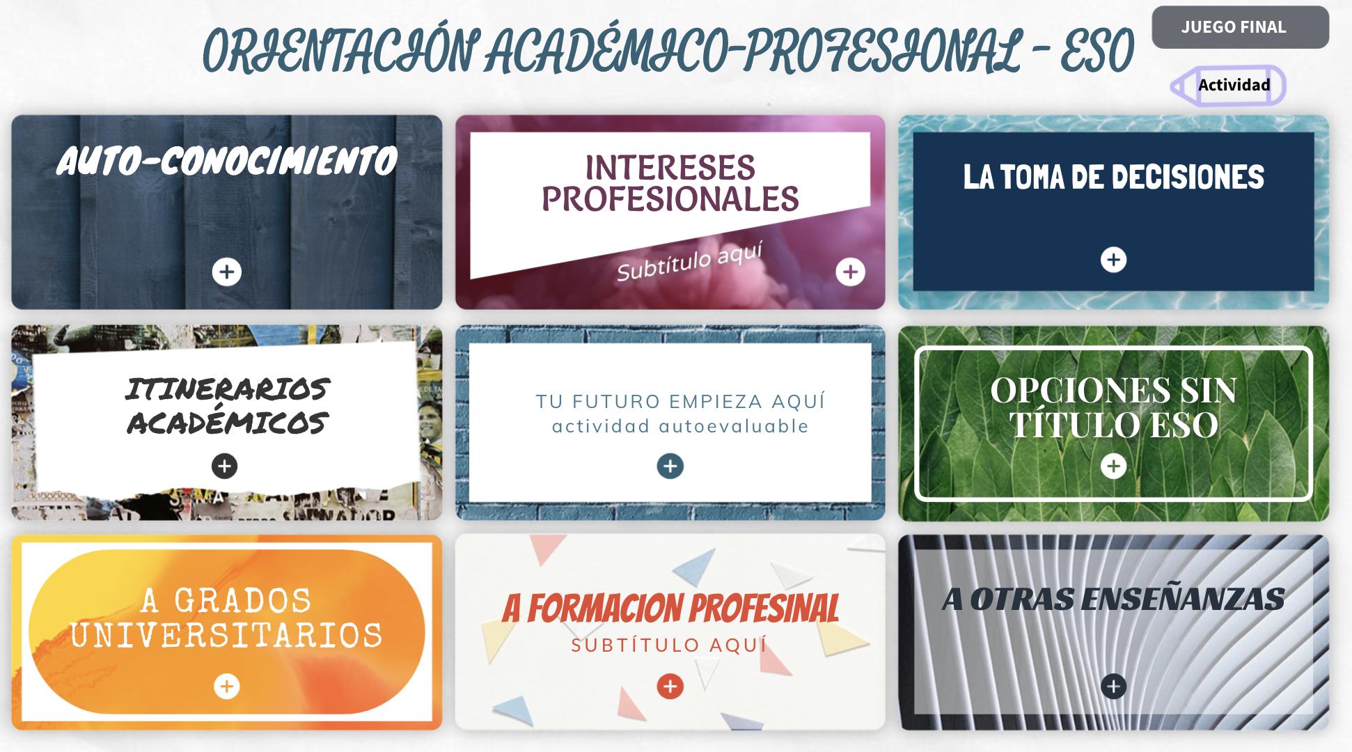 Orientación académica y profesional